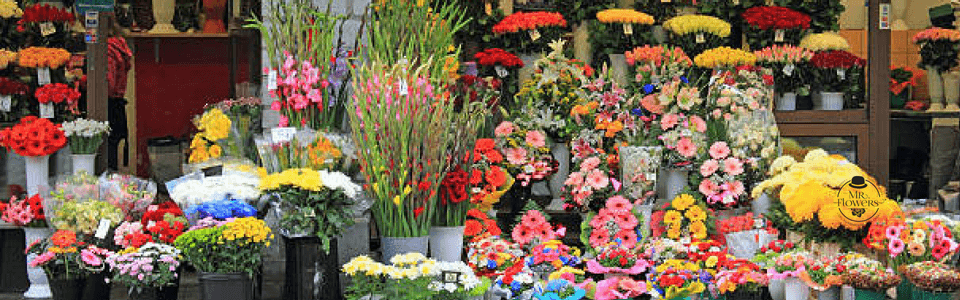 floreria frente
