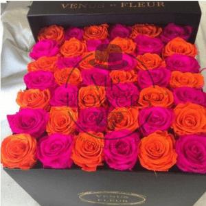 Caja con 36 Rosas Mixtas