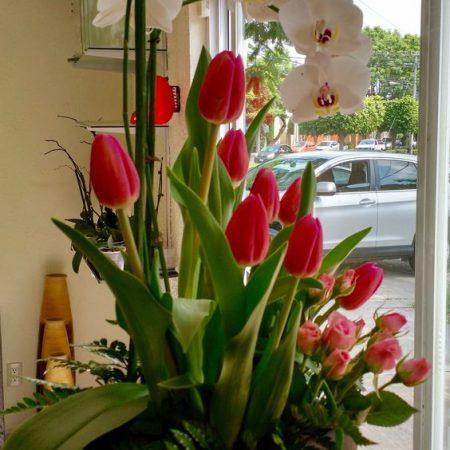 Arreglo con orquidea, mini rosa y tulipan